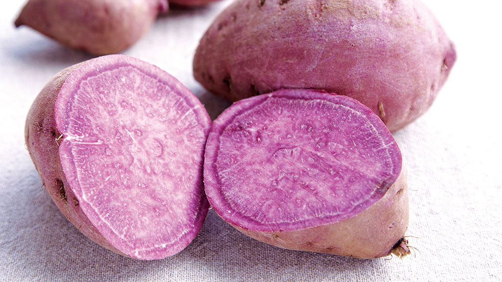 八重濑的胭脂红薯
