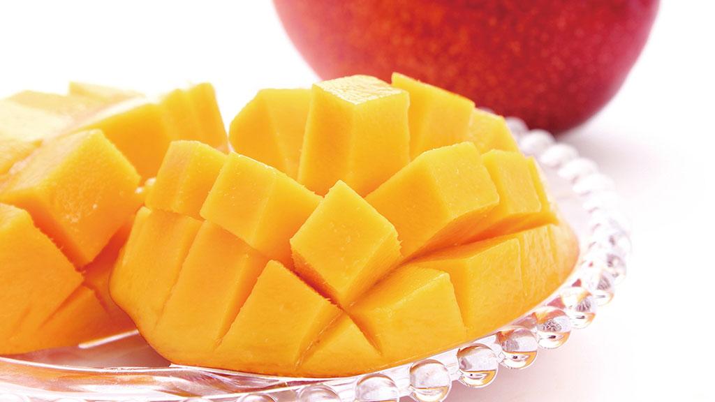 八重濑的芒果