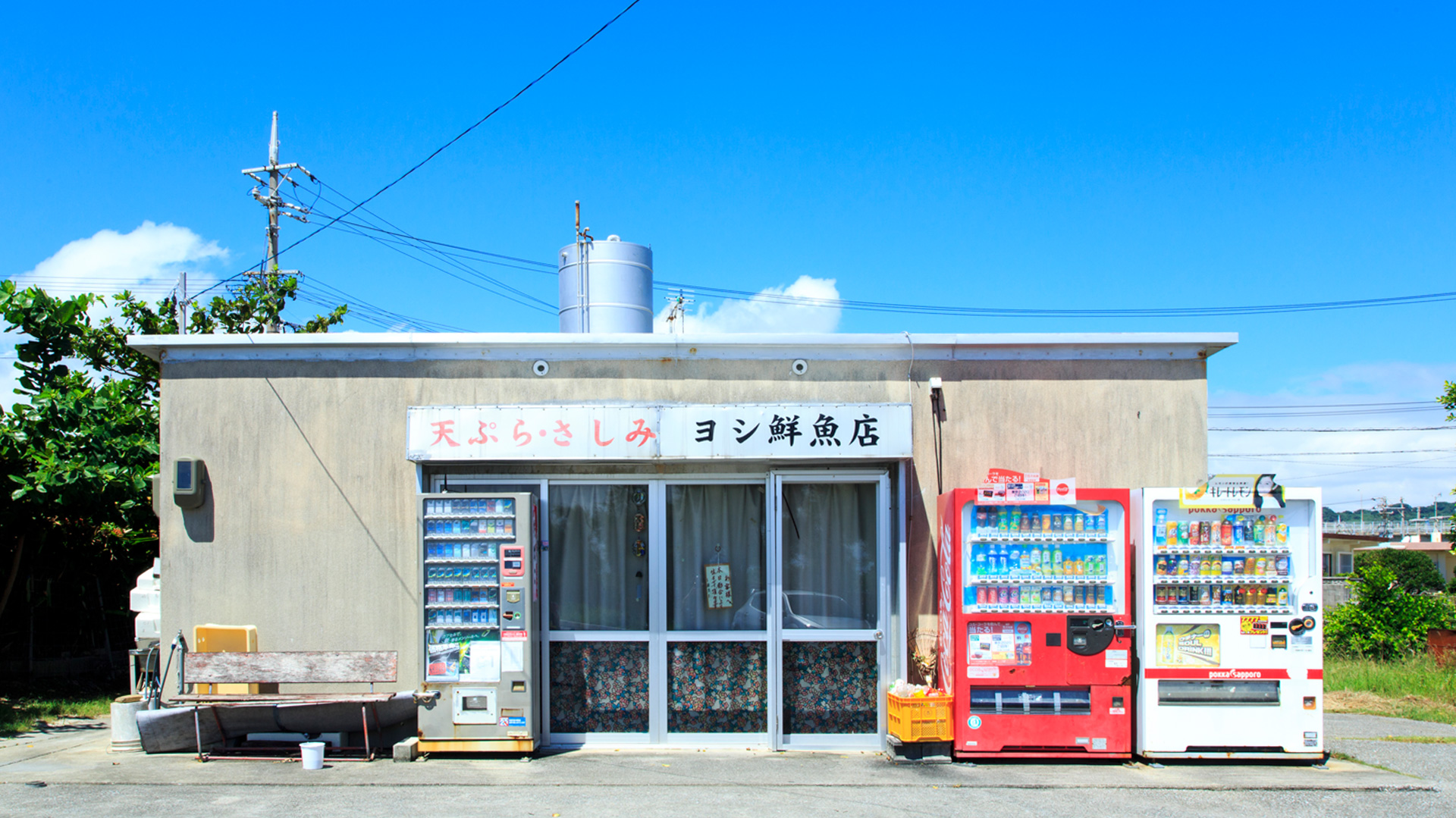 yoshi鲜鱼店